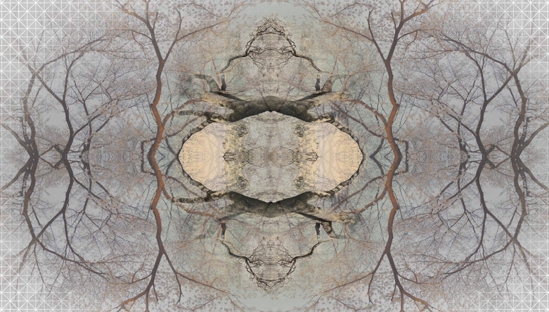 Moooi Carpets Diamond Tree